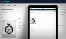 Entorn per a editar, revisar i crear dades amb Coeli